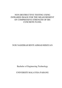Non-destructive testing using infrared image for the